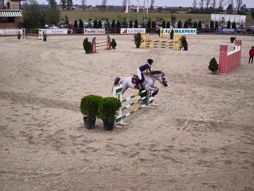 Finala Circuitului Salonul Calului